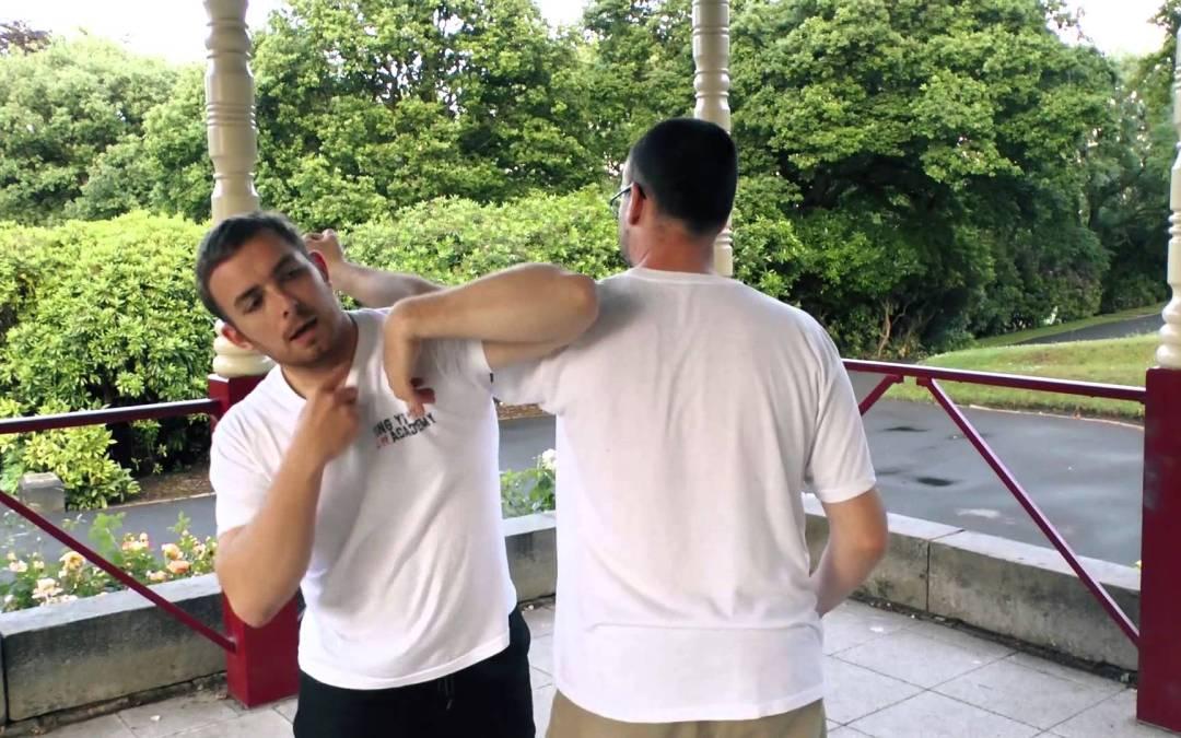 Xing Yi Tiger: The Tiger Triple Palm