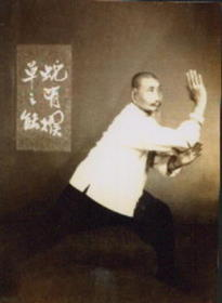Lu-Songgao-Snake