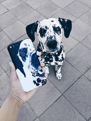 google pixel phone case