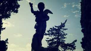 Angelito y árboles