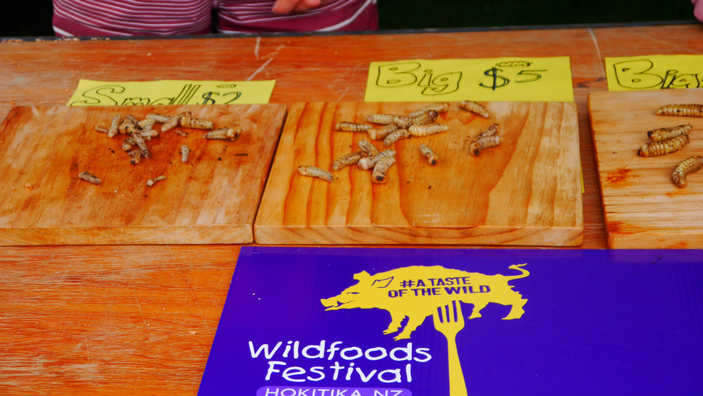 Wildfoods Festival Hokatika