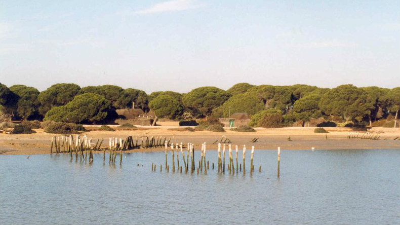 Doañana - Mejores parques naturales de España