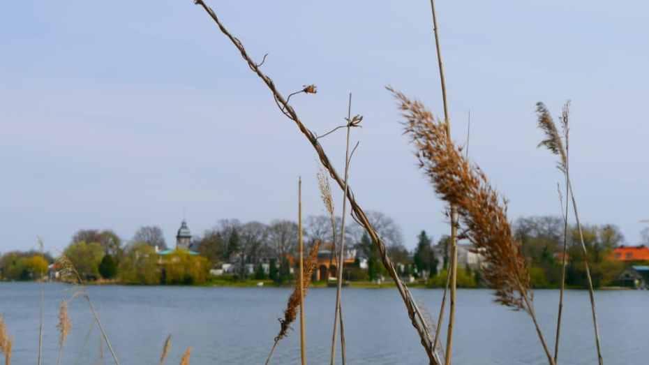 Mejores barrios donde hospedarse en Potsdam, Alemania - Babelsberg