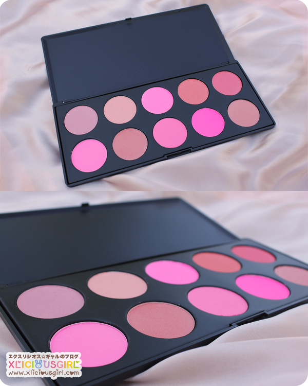 tmart.com 10 color blush palette review