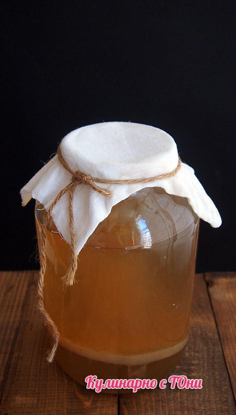 Направи си сам чай от гъба Комбуча