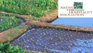 XLR8HI - Entrepreneurial Development Workshop Native Hawaiian Hospitality Association (STARTUP PARADISE EVENTS HAWAII)