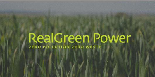 RealGreen Power