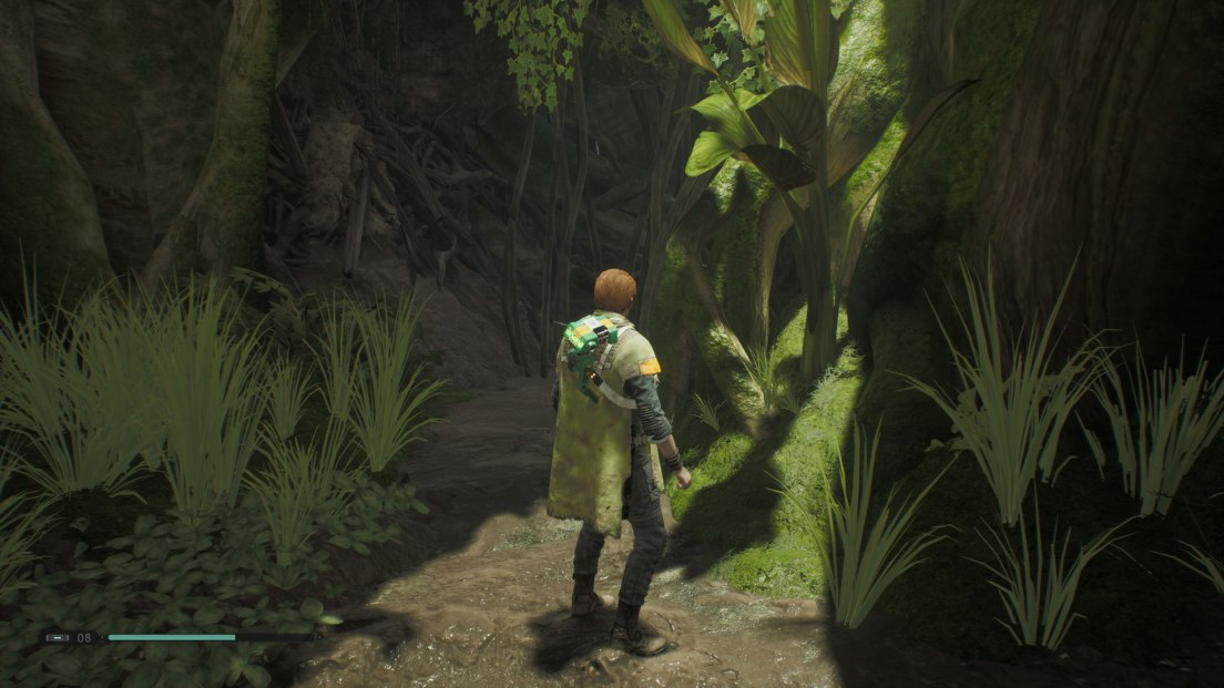 Overgrown-pass
