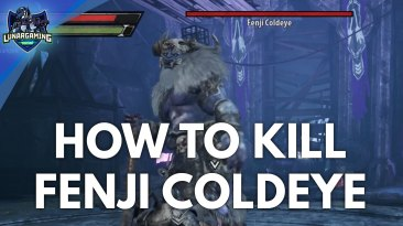 Fenji Coldeye Boss Fight Dungeons & Dragons Dark Alliance