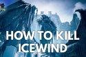 Icewind Final Boss Fight & Ending Dungeons & Dragons Dark Alliance