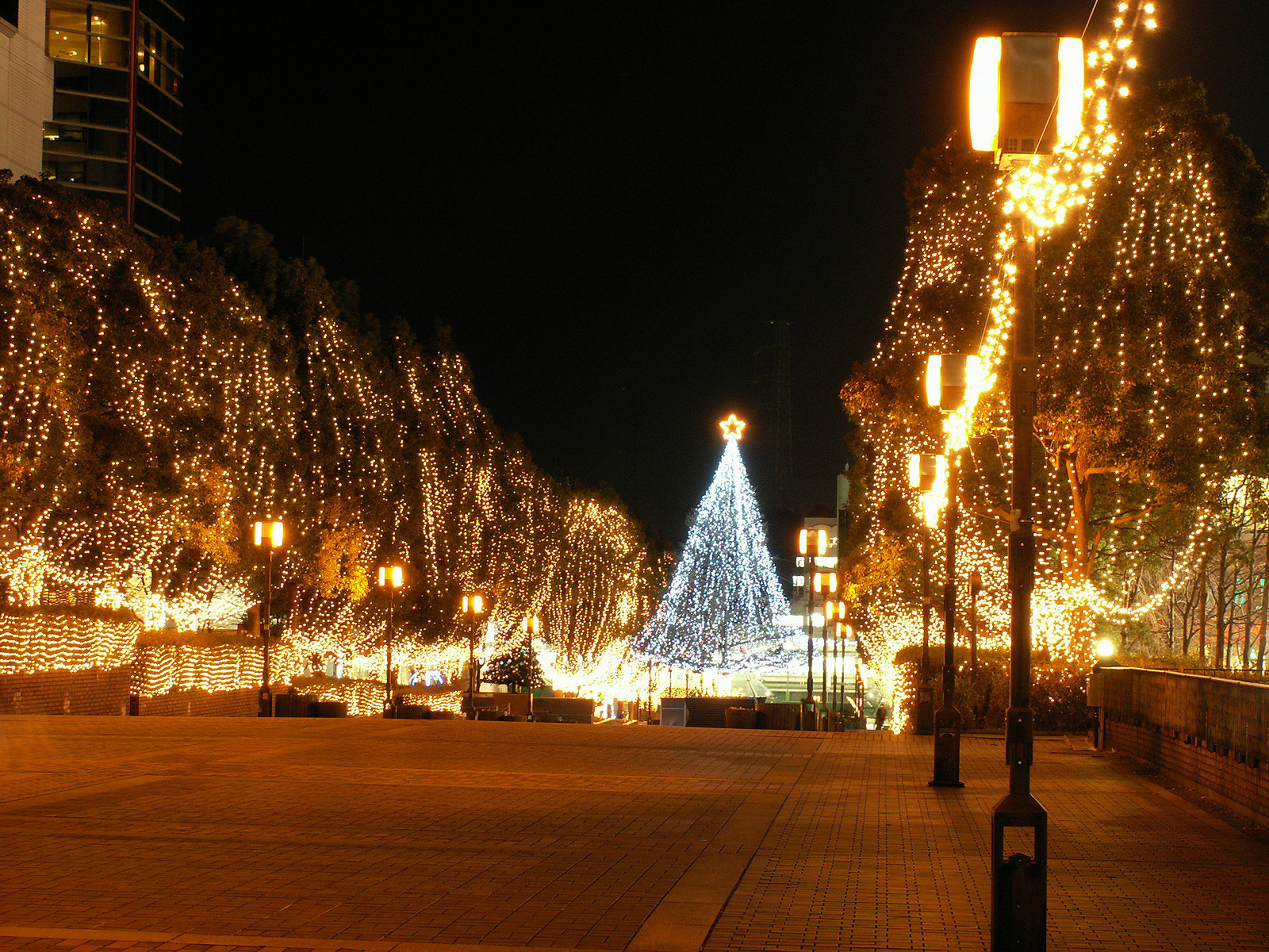 Image result for street with christmas lights