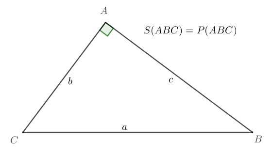 [triangolo rettangolo]