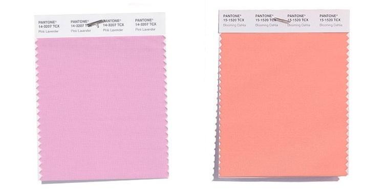 Roz: Pink Lavander si Blooming Dahlia