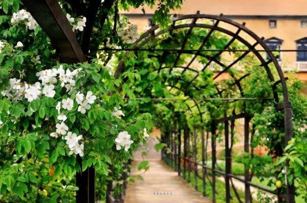 """""""Ленивые грядки"""" - оригинальные решения, о которых мечтает каждый садовод"""