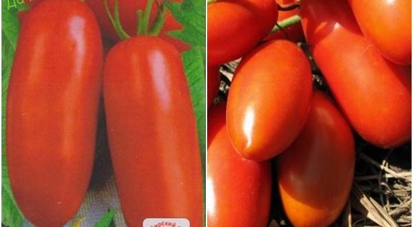 Характеристика и описание сорта томата Супермодель – Дачные дела