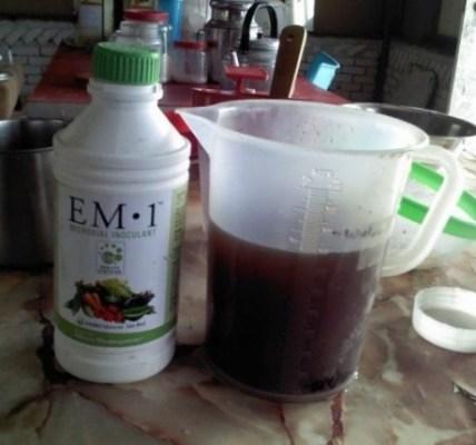 Самостоятельная подготовка ЭМ-препаратов 3