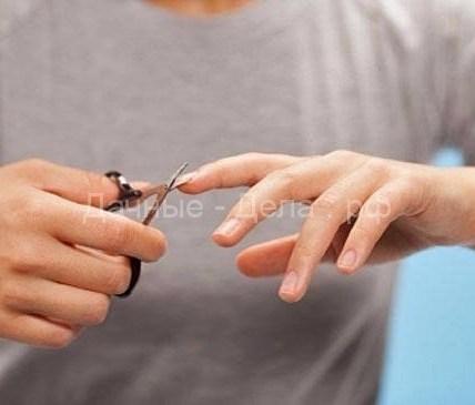 Стрижка ногтей по дням недели 6