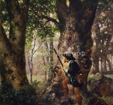 Зловещие деревья: 7 лесов из ночных кошмаров 5