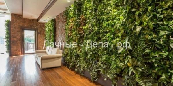 Озеленение интерьеров: в чем особенности услуги 13