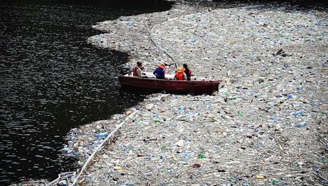 Остров мусора, Тихий океан