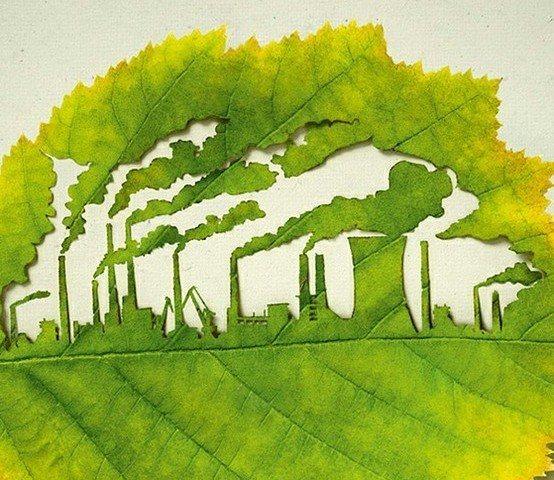 экологическая экспертиза