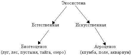 """Kalmyks negre. Reinstalarea Altai. Templul """"Locuința de aur a lui Buddha"""""""