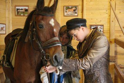 зауздывание+лошадь