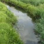 Река Средняя