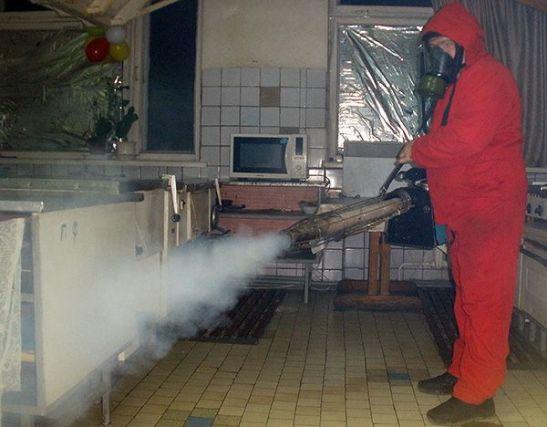 Гарантированное уничтожение тараканов в Реутове. Цены