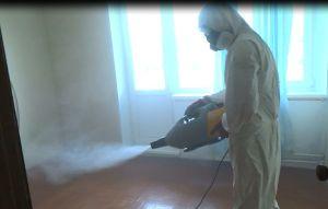 Дезинфекция при лишае в квартире у человека или животного