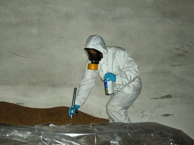 Фумигация газом фосфин деревянного дома от жуков