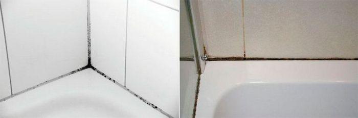 плесень между плитками в ванной что делать