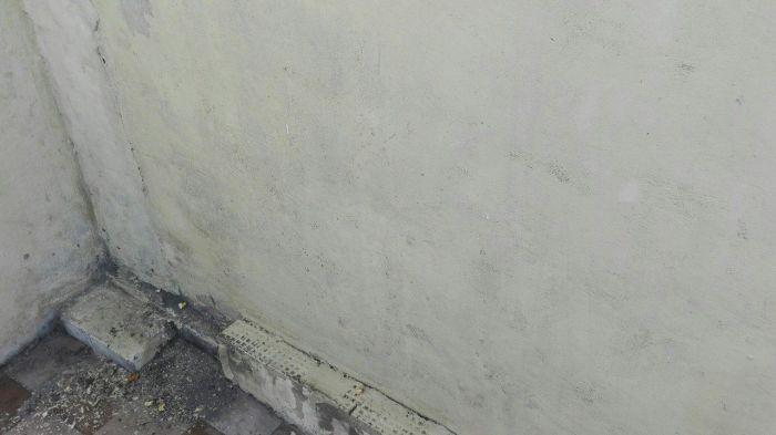 Стена после обработки