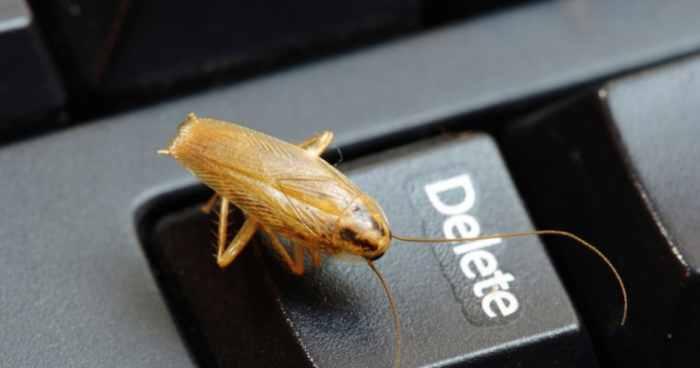 Уничтожение тараканов в офисе в Москве
