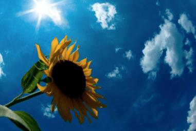 スクリーンショット 2015-07-25 12.18.01