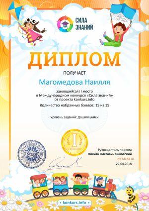 Магамедова Наиля 01