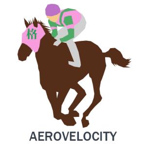 エアロヴェロシティ