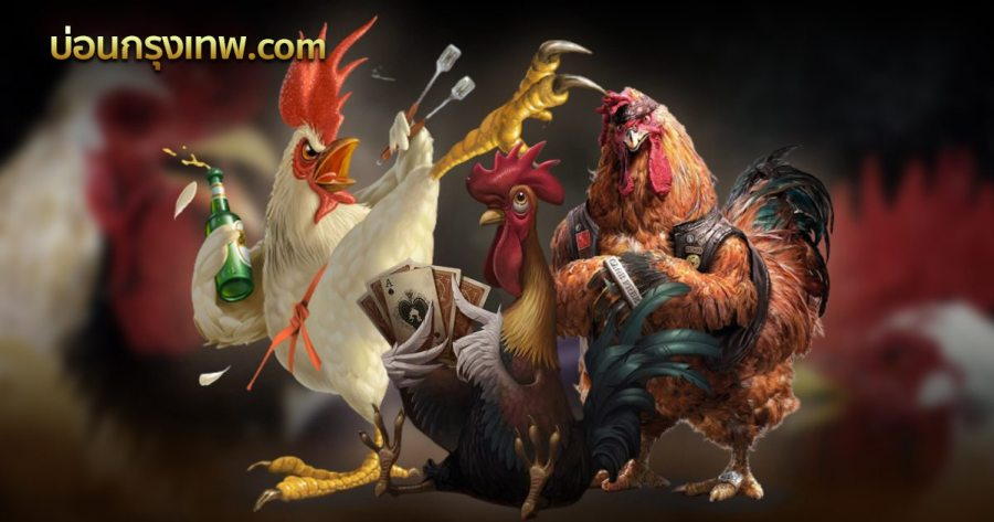 ไก่ชนออนไลน์สด เดิมพันไก่ชนเว็บ UFA