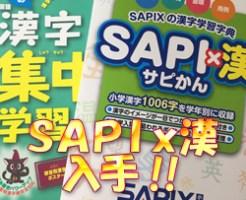 SAPIx漢(サピかん)