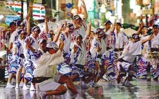 東京高圓寺阿波舞祭1