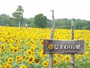2015推薦的北海道旅遊景點【追加篇】