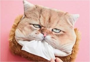 超逼真貓臉造型面紙套o(^・x・^)o無精打采的可愛表情讓人印象深刻!