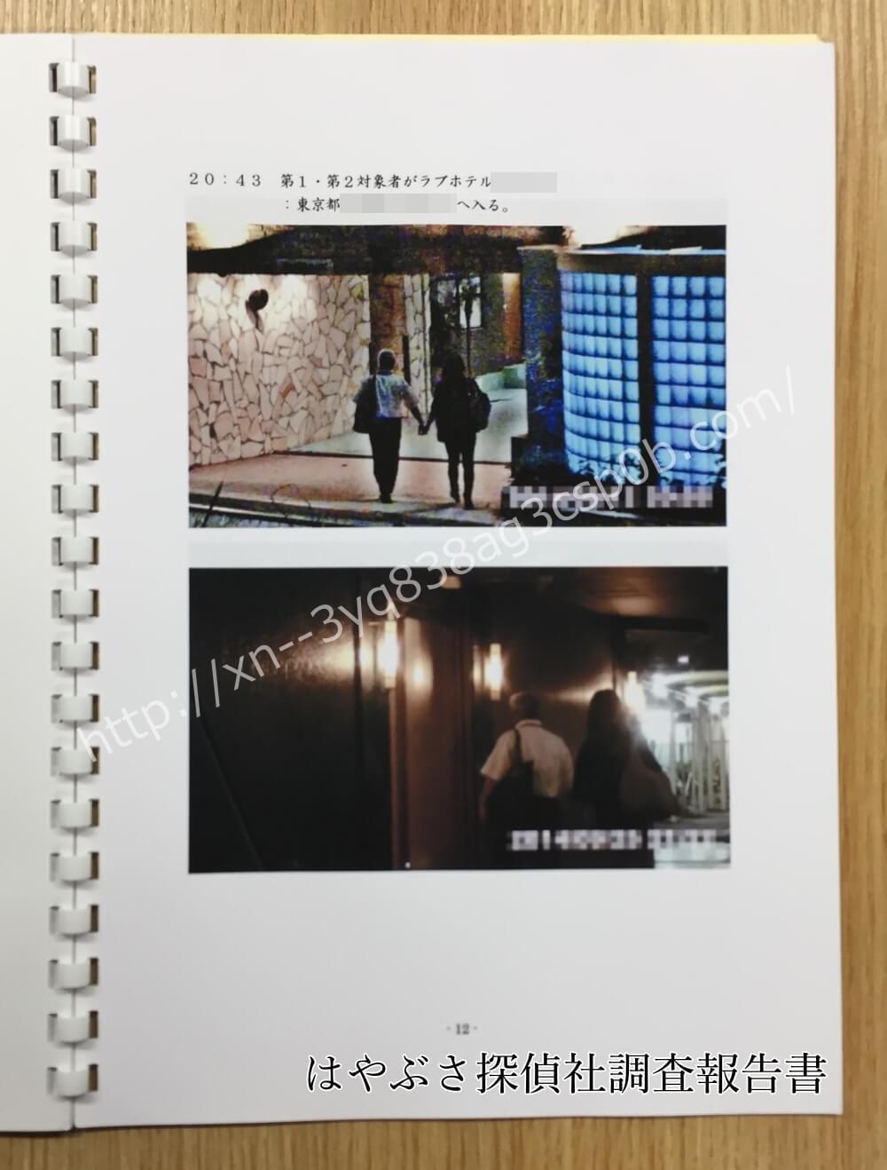 探偵新宿はやぶさ探偵社調査報告書口コミ評判