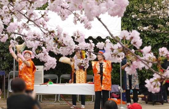 桜守公園 観桜会 祭りイベント