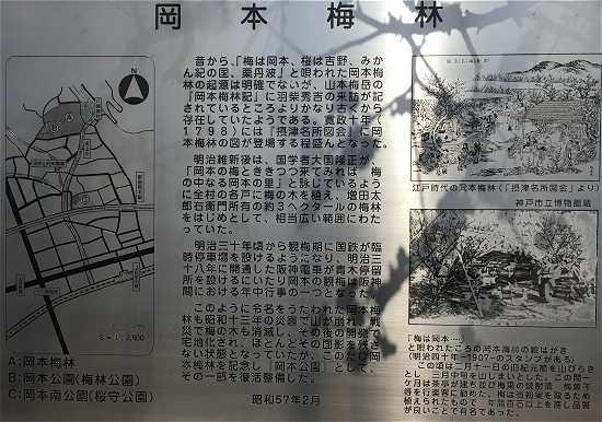 岡本梅林公園の歴史