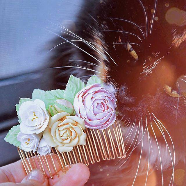 Я (наверное, как и многие) не особо люблю гендерные праздники из-за убеждения, что проявлять внимание к окружающим нужно не раз в году. Да и фундамент 8 марта был заложен не ради того, чтобы женщинам дарили цветы и конфеты. Но традиции же, куда без них?))⠀Поэтому вот вам цветочки в форме гребня и любопытный нос моей кошечки Милы  фото есть и цветы, и девочка, поэтому объявляю его самым настоящим восьмимартовским снимком ⠀С восьмым днём весны, друзья! ️
