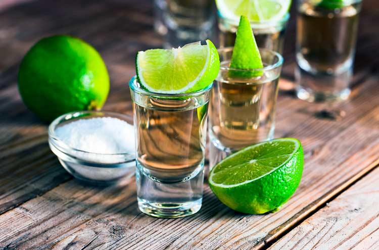 Agava e aloe para tequila