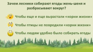 "Викторина по книге Ю. Аракчеева ""По уссурийской тайге"""