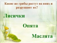Викторина по книге Юрия Дмитриева «Кто в лесу живет и что в лесу растет»