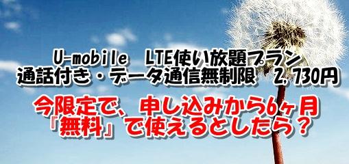 u-mobileプラン特徴